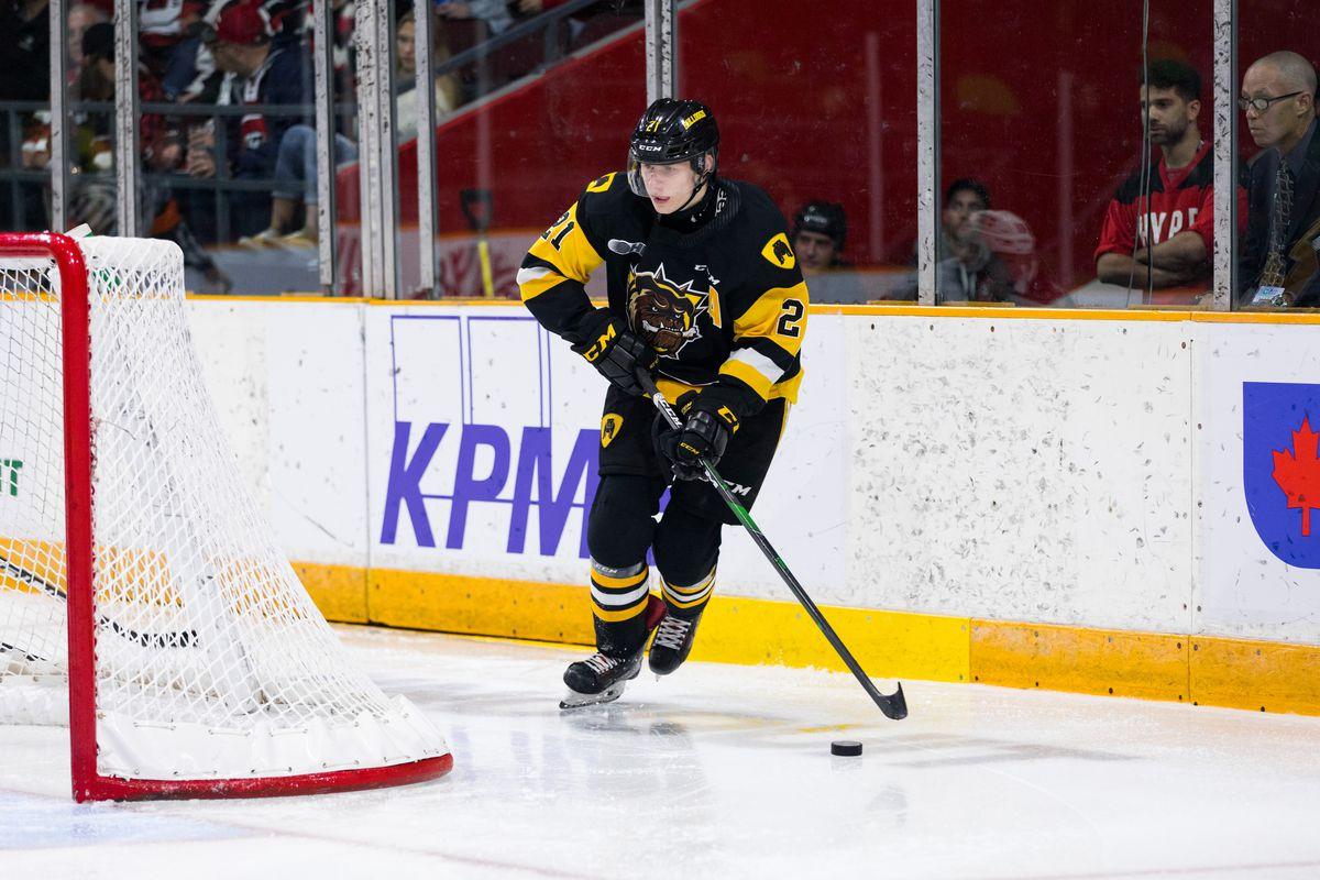 OHL: OCT 20 Hamilton Bulldogs at Ottawa 67's