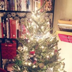 I absolutely adore the holiday season in New York City. Ice skating in <b>Bryant Park</b>, watching the <b>Rockettes</b>, shopping the holiday markets, I do it all! Today I decided it was time to deck the halls of my apartment, so I went out and bought my