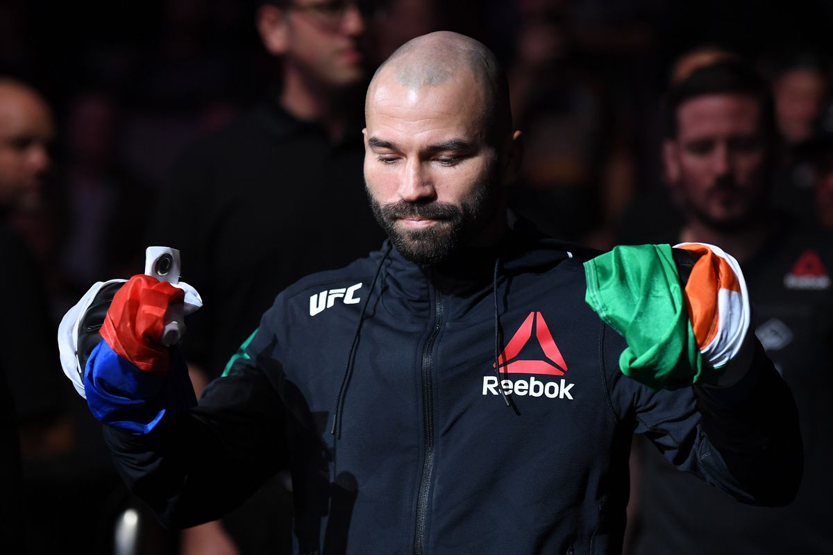 UFC Fight Night: Johnson v Lobov
