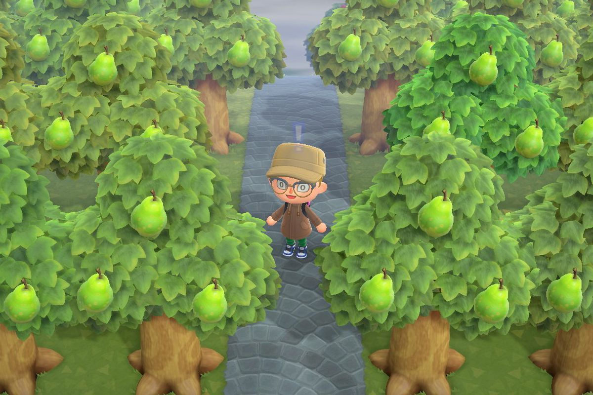 A bunch of pears in Animal Crossing: New Horizons.