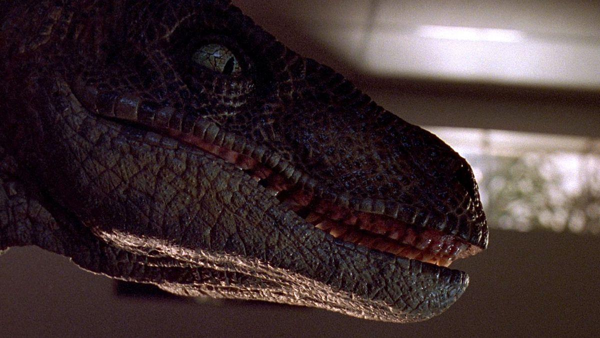 a close-up of a raptor in Jurassic Park