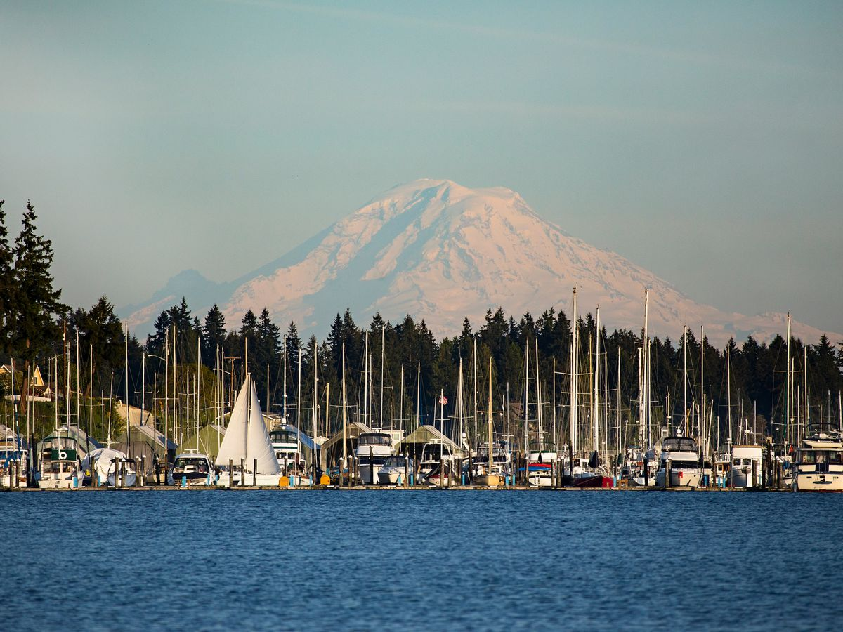 A view of a marina filled with sailboats. Behind it, a line of green trees and a large snow-capped mountain