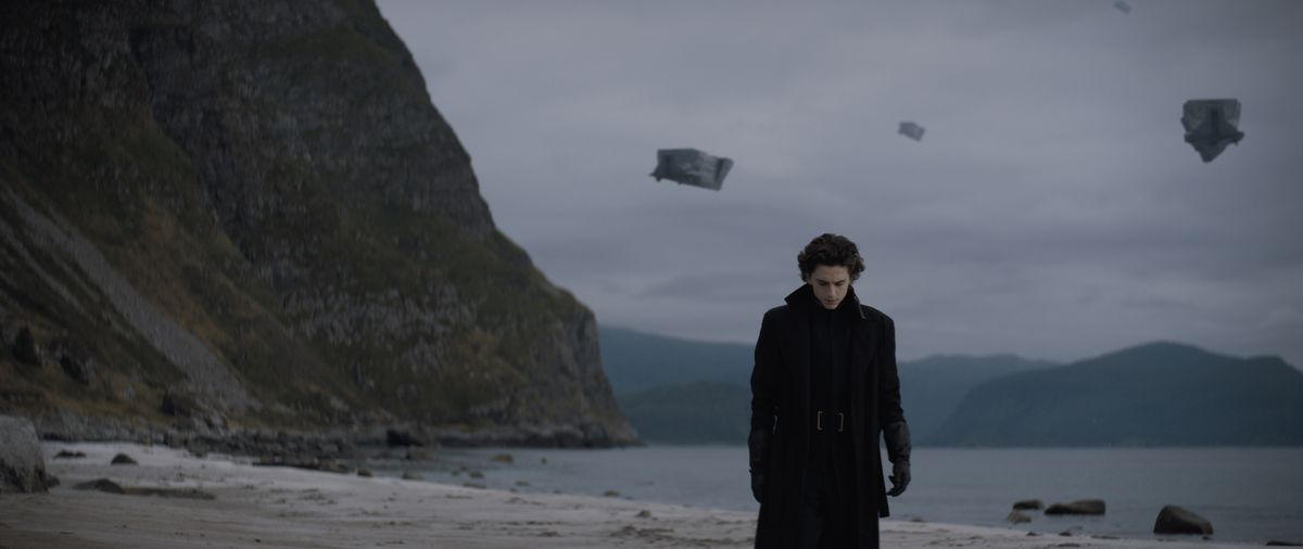 Paul (Timmy Chalamet) walks the beach in Dune