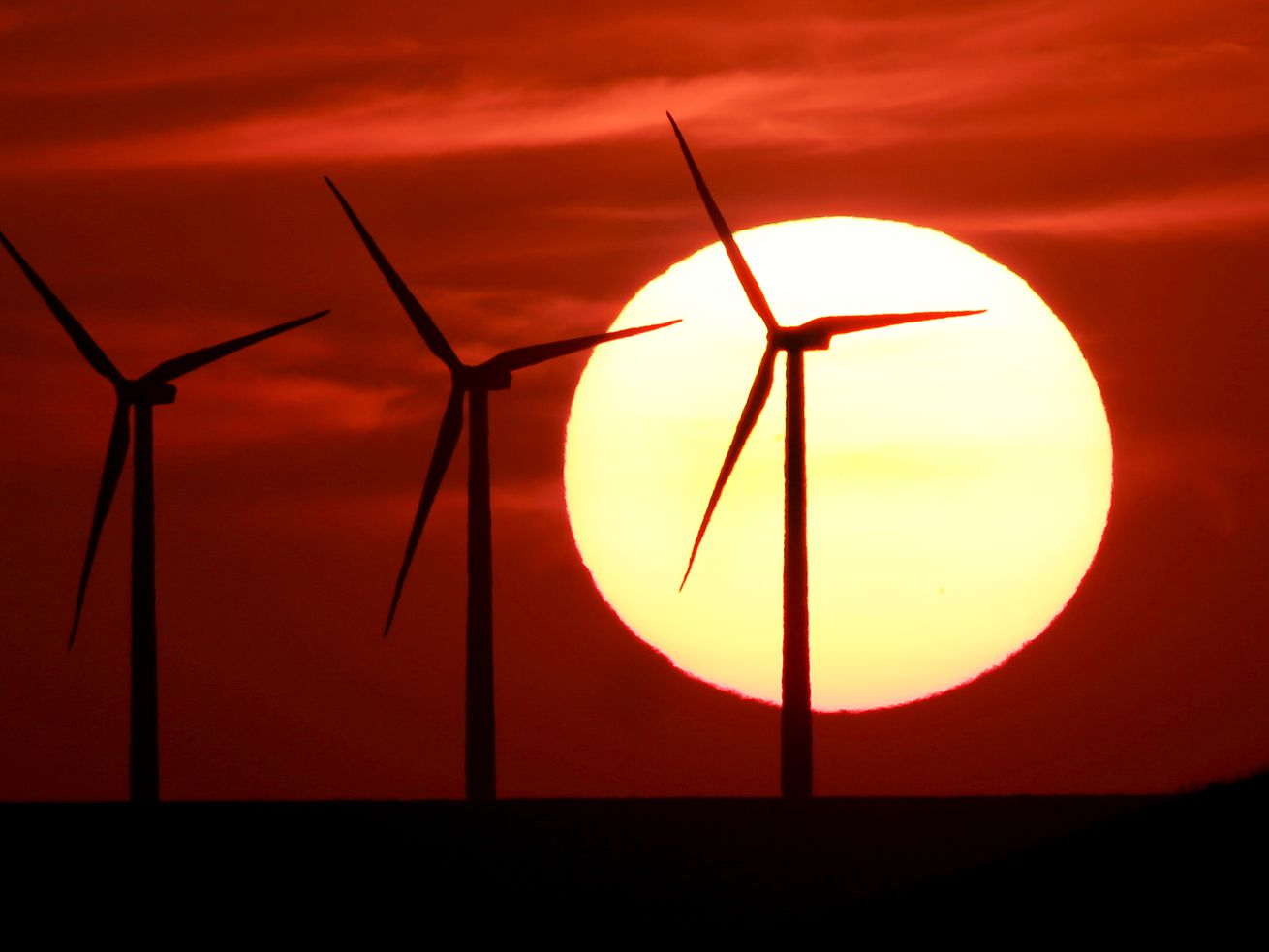 A wind farm silhouetted by a setting sun.
