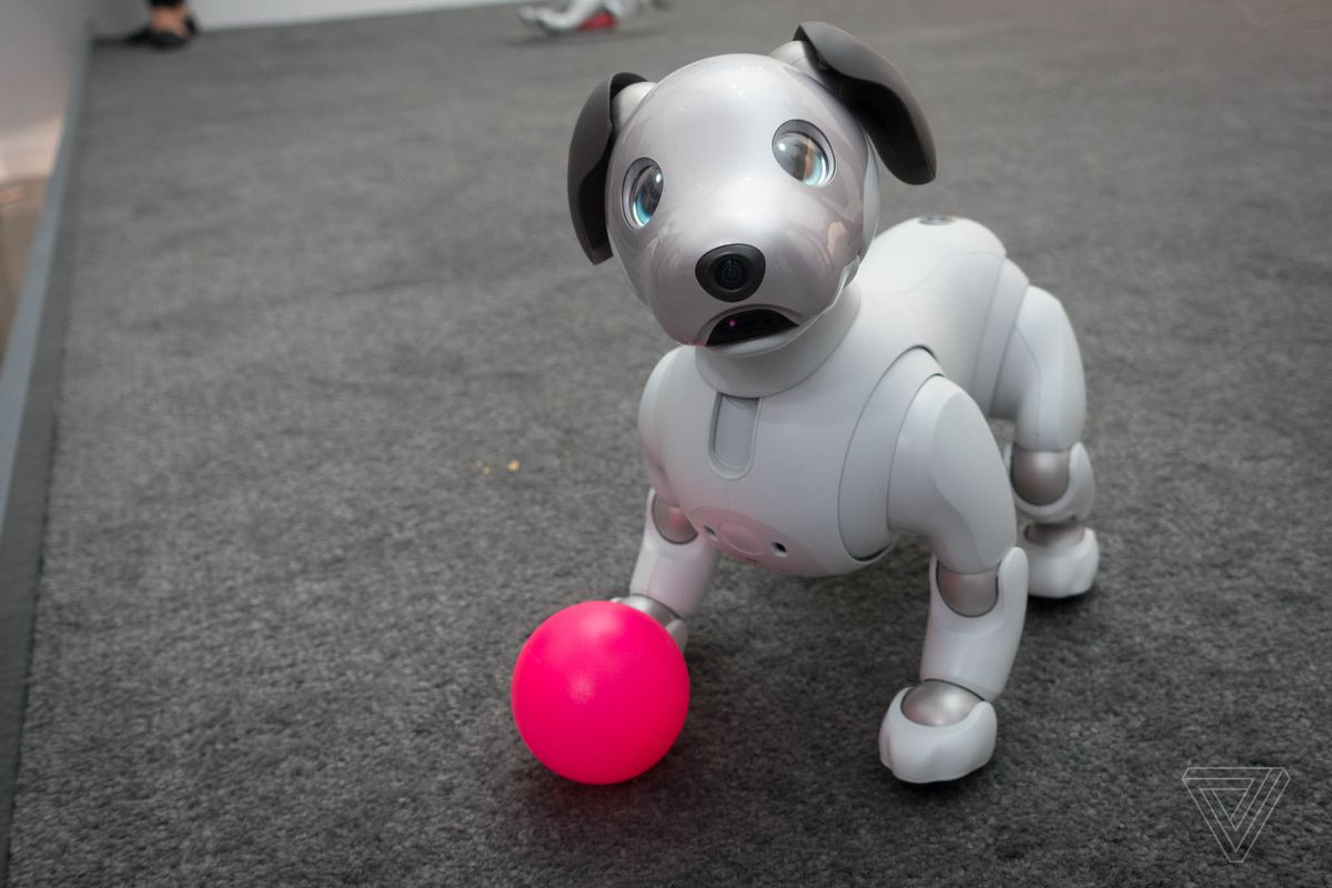 Sony S Robot Dog Aibo Is Headed To The Us For A Cool 2 899 The Verge