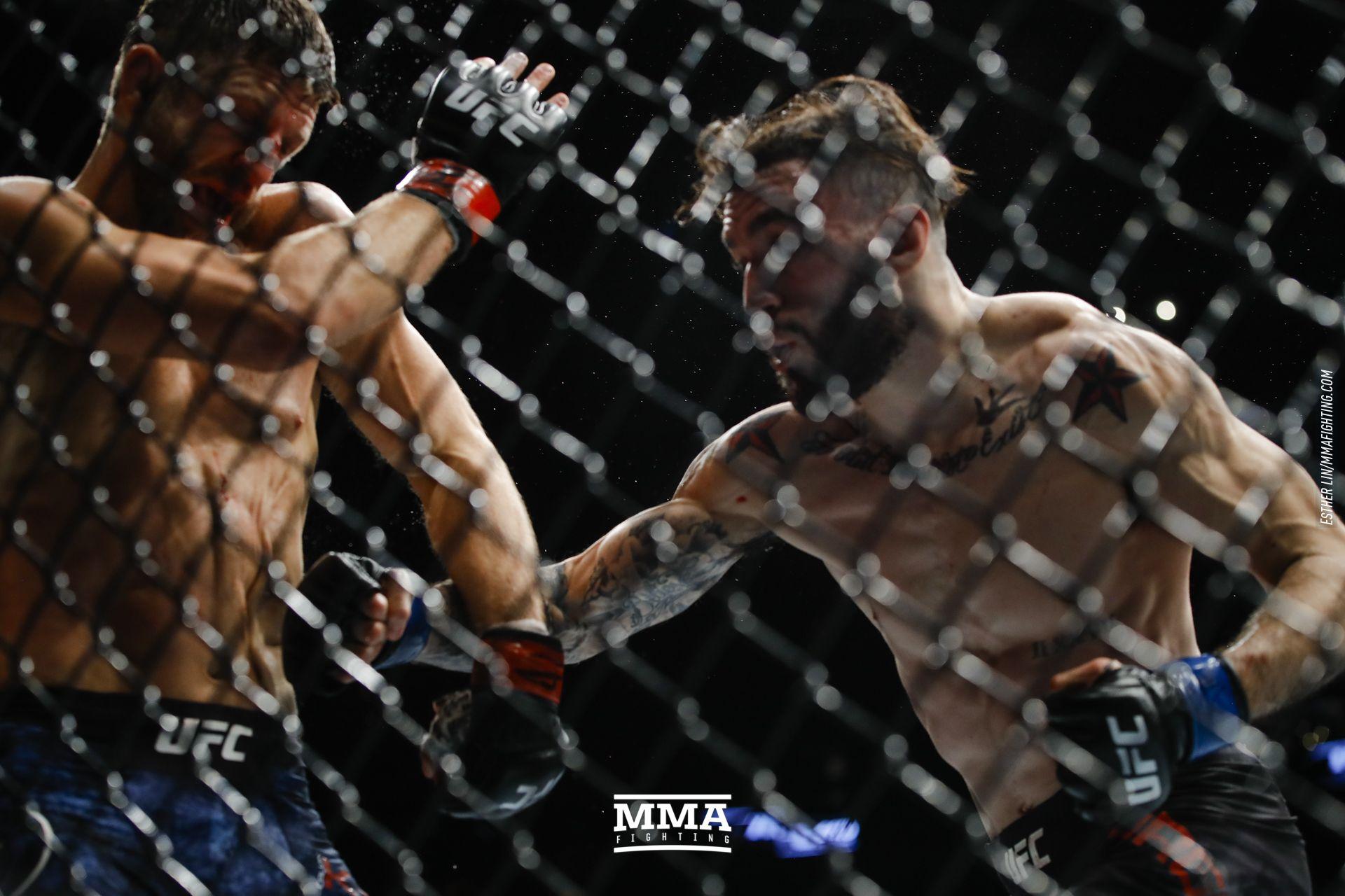 UFC 220 photos