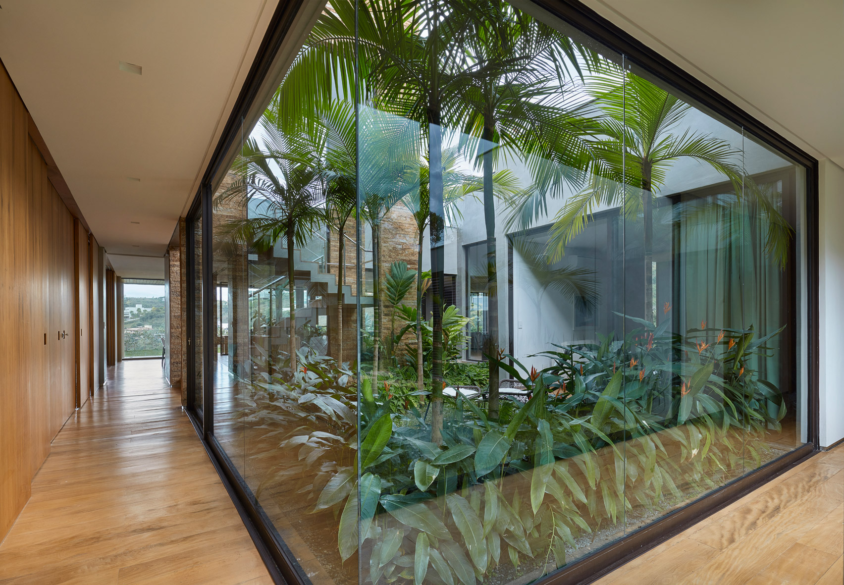Modern house in brazil hides glorious tropical garden curbed for Planta tropical interior
