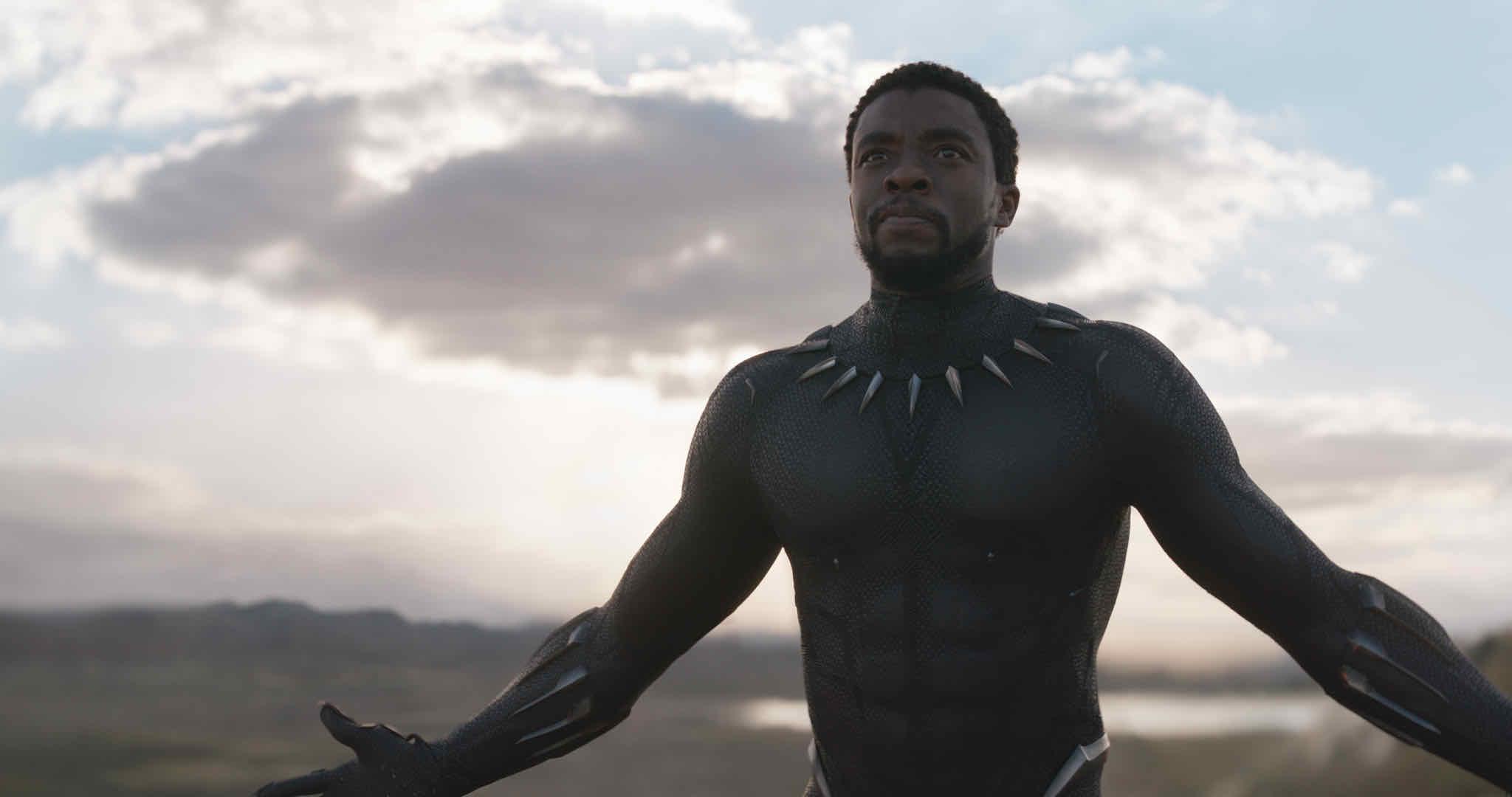Image result for black panther marvel