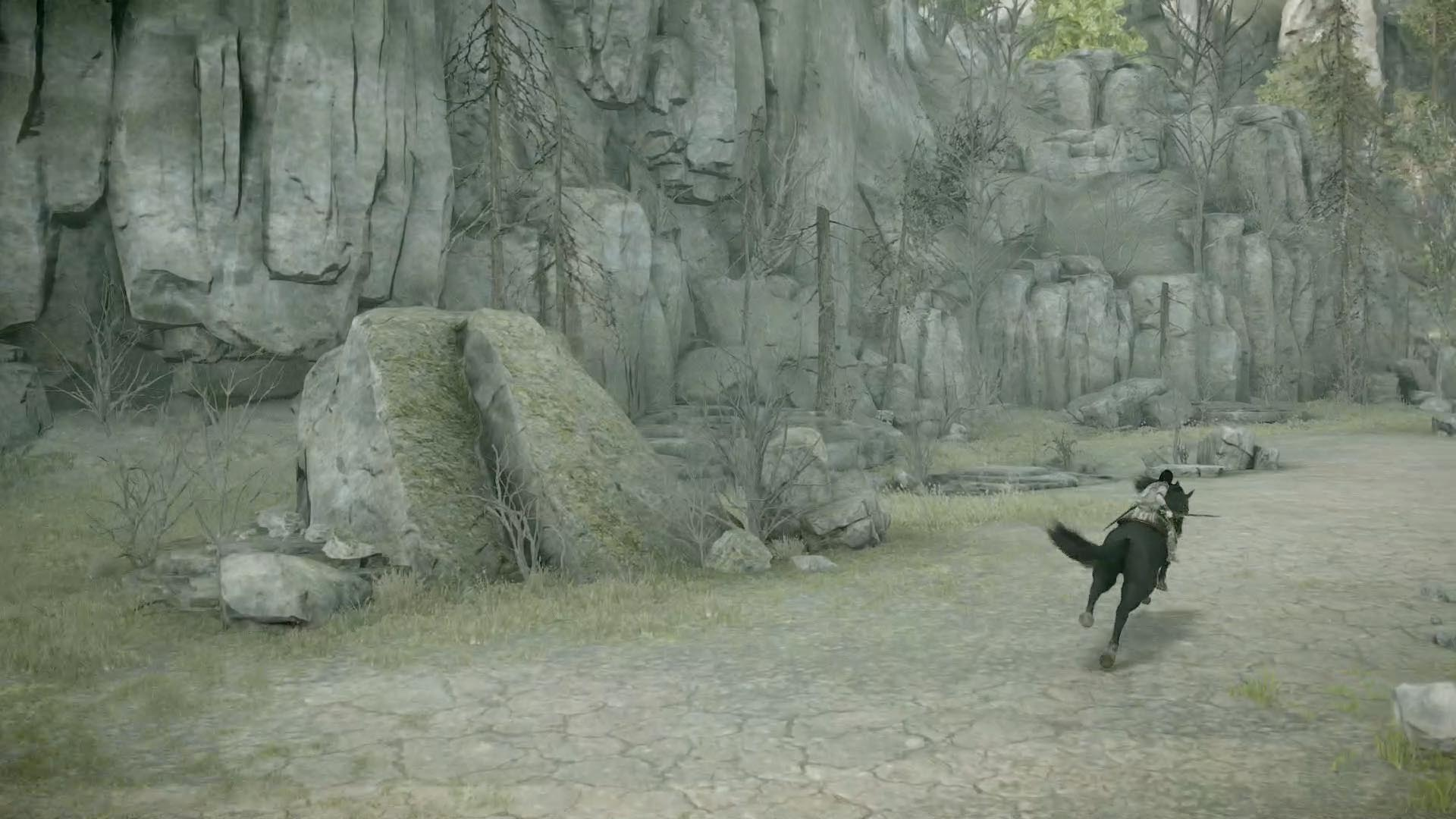 shadow of the colossus lizard tails how to eat