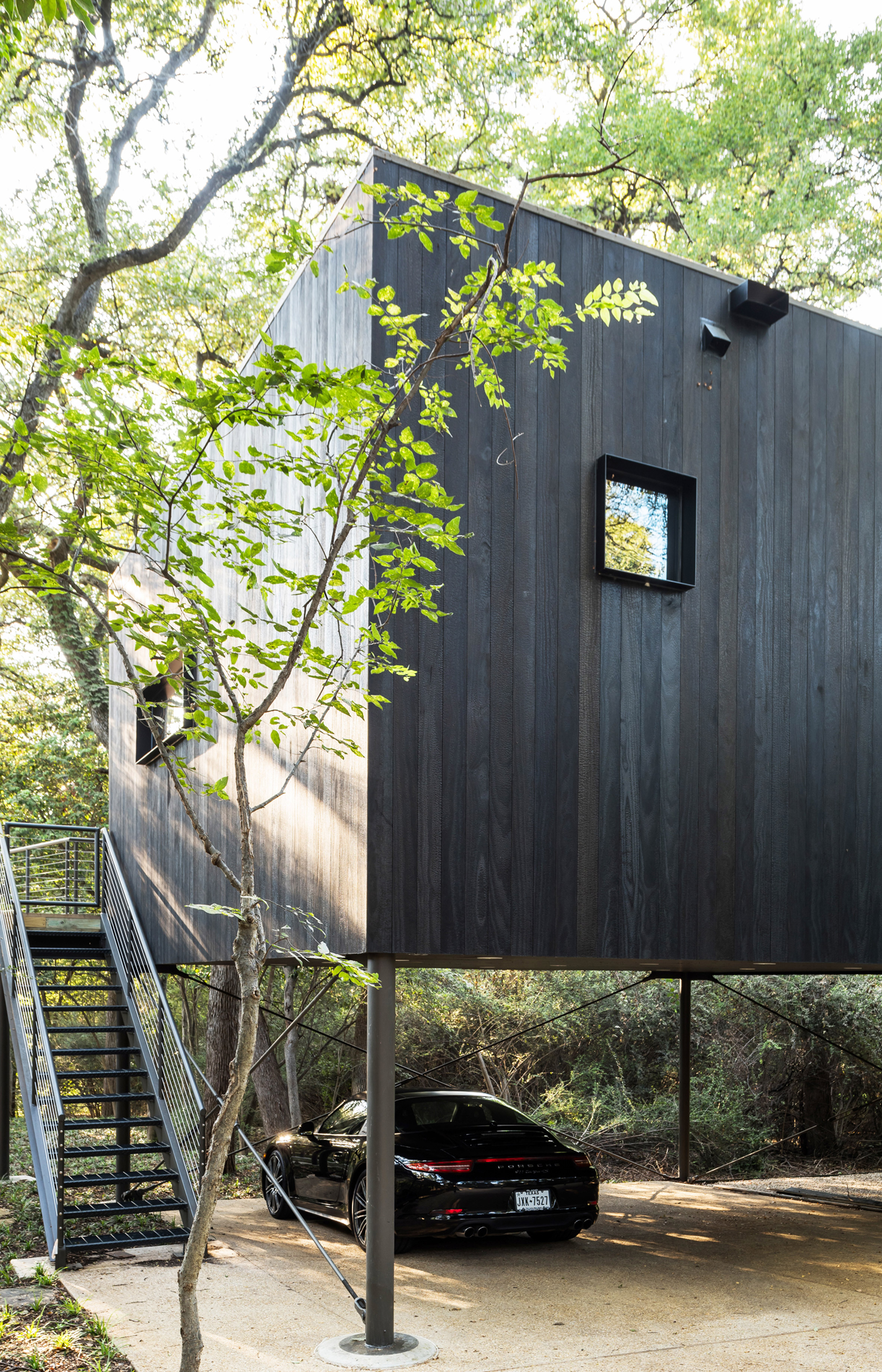 Minimal guest house looks like it's floating in the trees