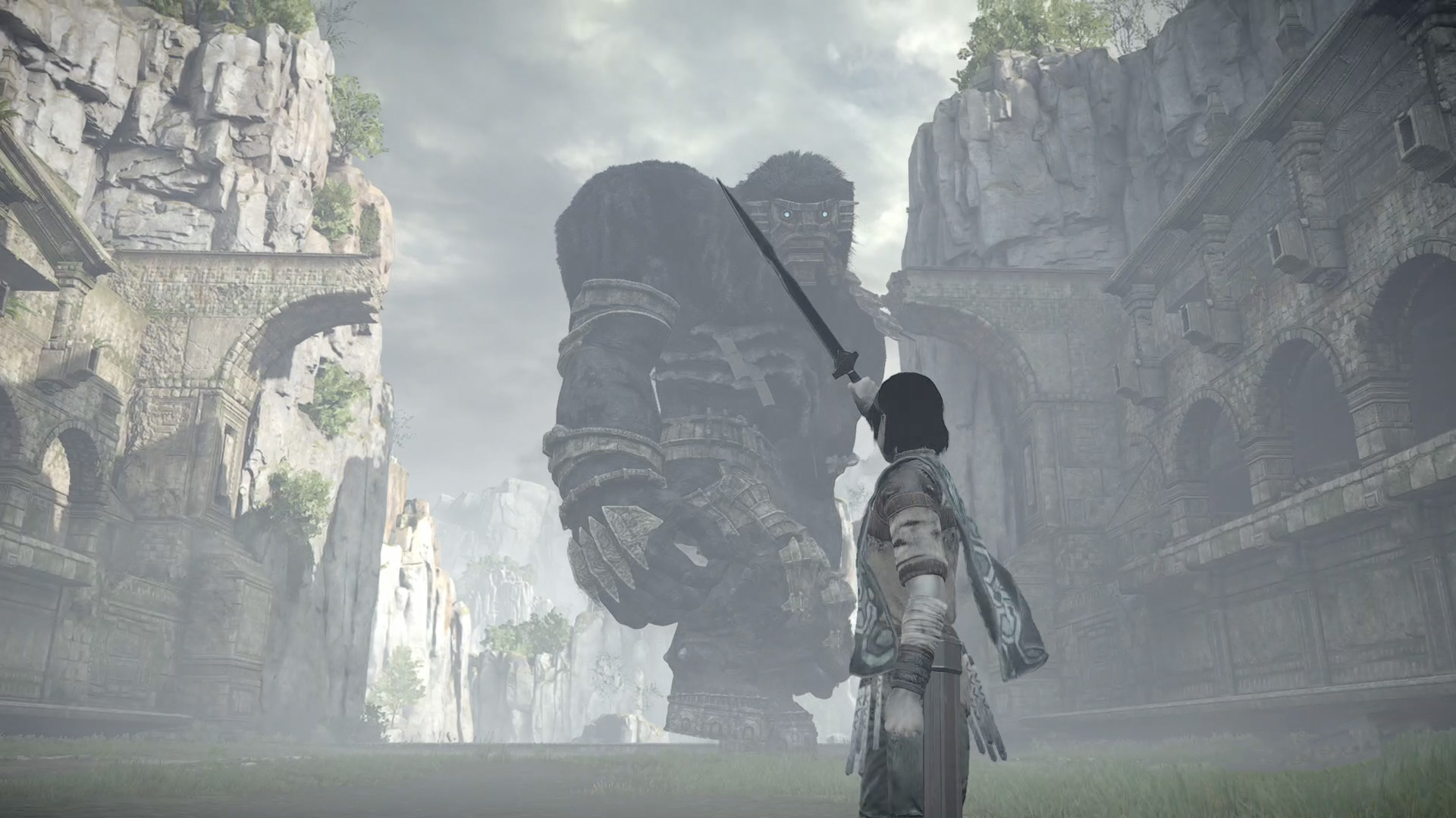 shadow of the colossus lizard guide