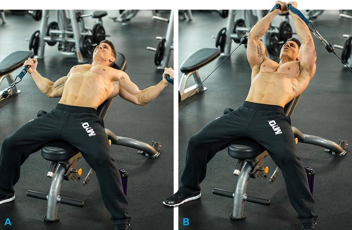 10 Best Chest Exercises For Building Muscle : Bodybuilding