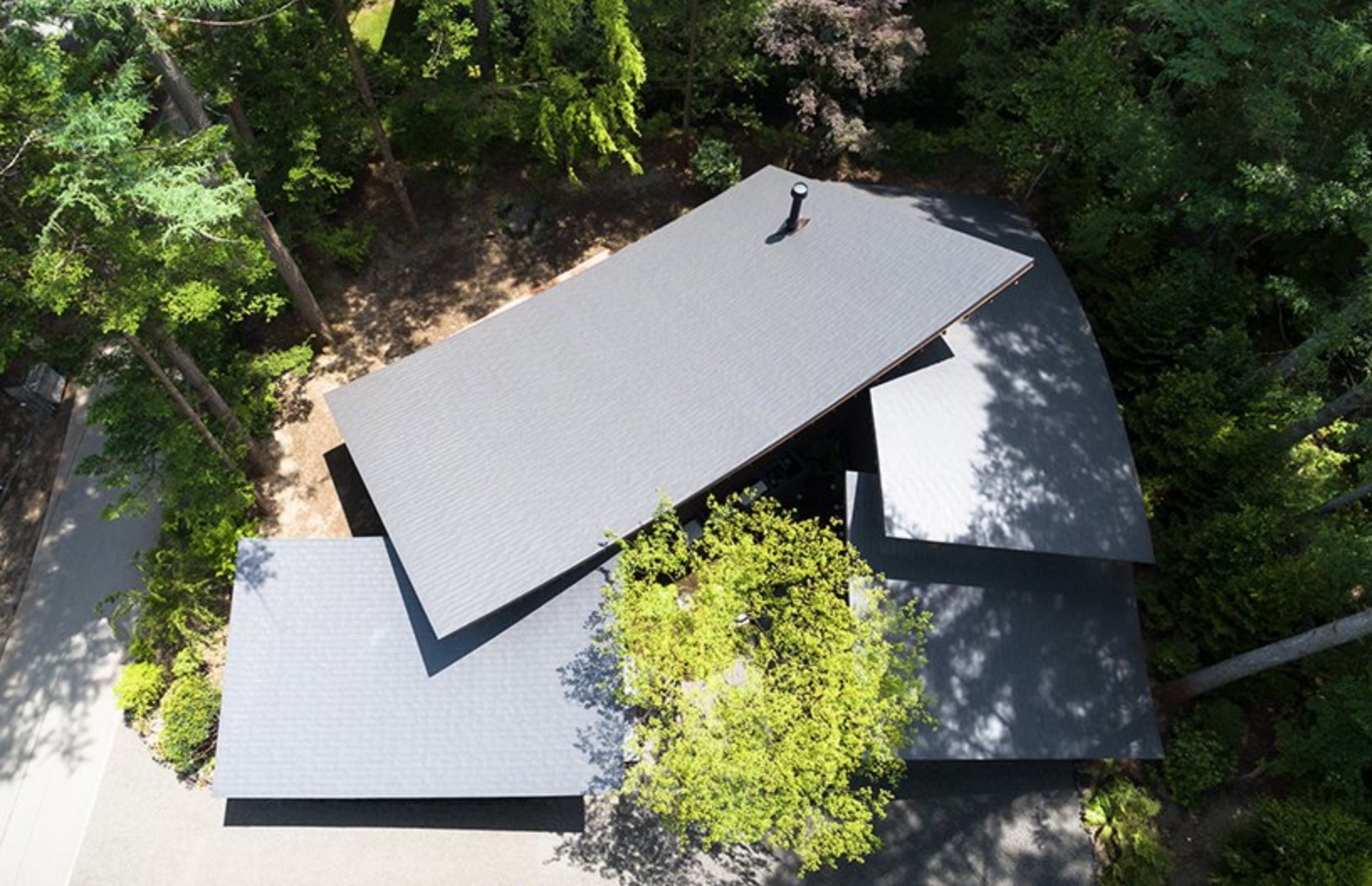 Modern Japanese house in the woods looks like fallen leaves