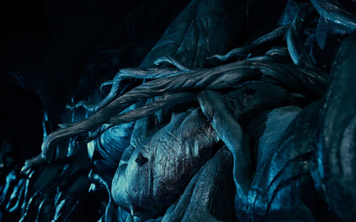 First look at the beasts of Harry Potter's new Universal