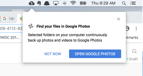 How to back up your Google Photos - The Verge