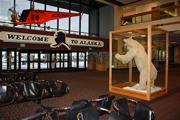 Airport Attractions From Polar Bears To Music Deseret News
