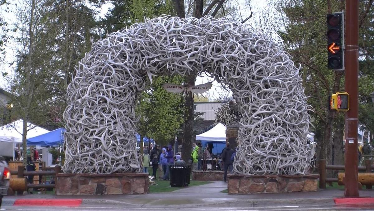 Antler auction nets record prices for Boy Scouts, elk refuge
