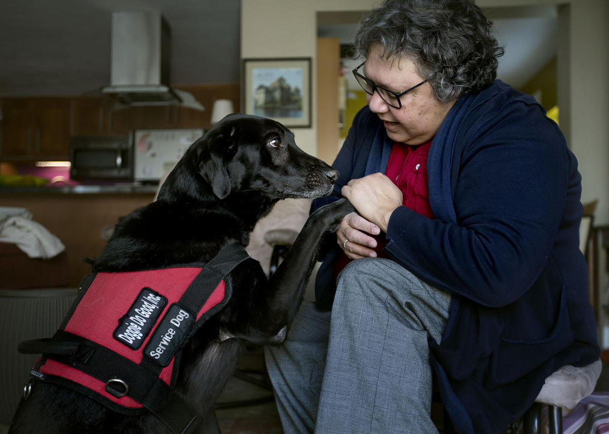 Proposed service animal registry would help ID growing