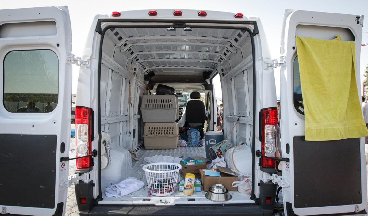 Homeless dogs, cats arrive in Utah from flood-ravaged