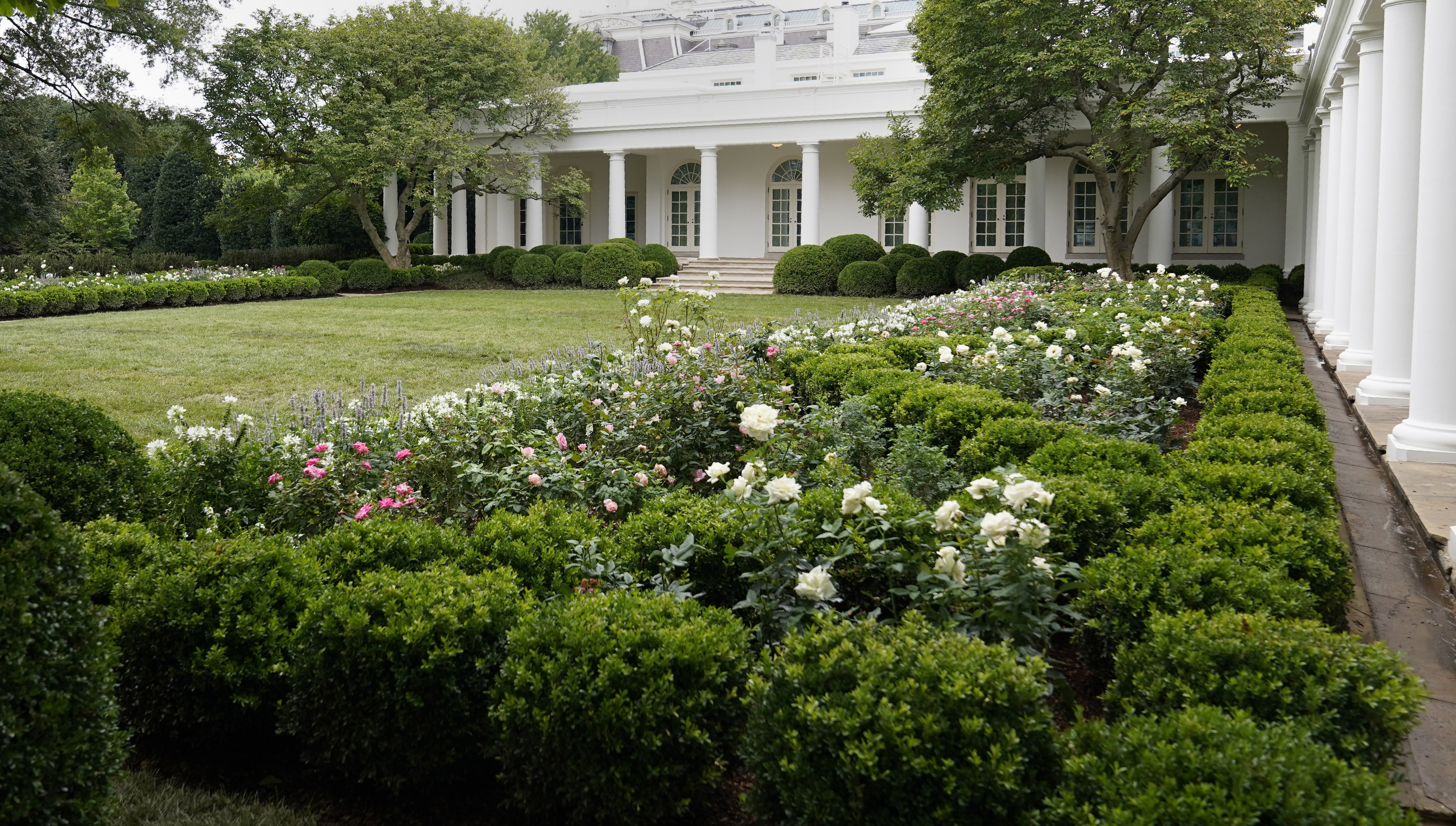 White House Rose Garden Renovation Newly Spruced Up Garden Set For First Lady Speech Chicago Sun Times