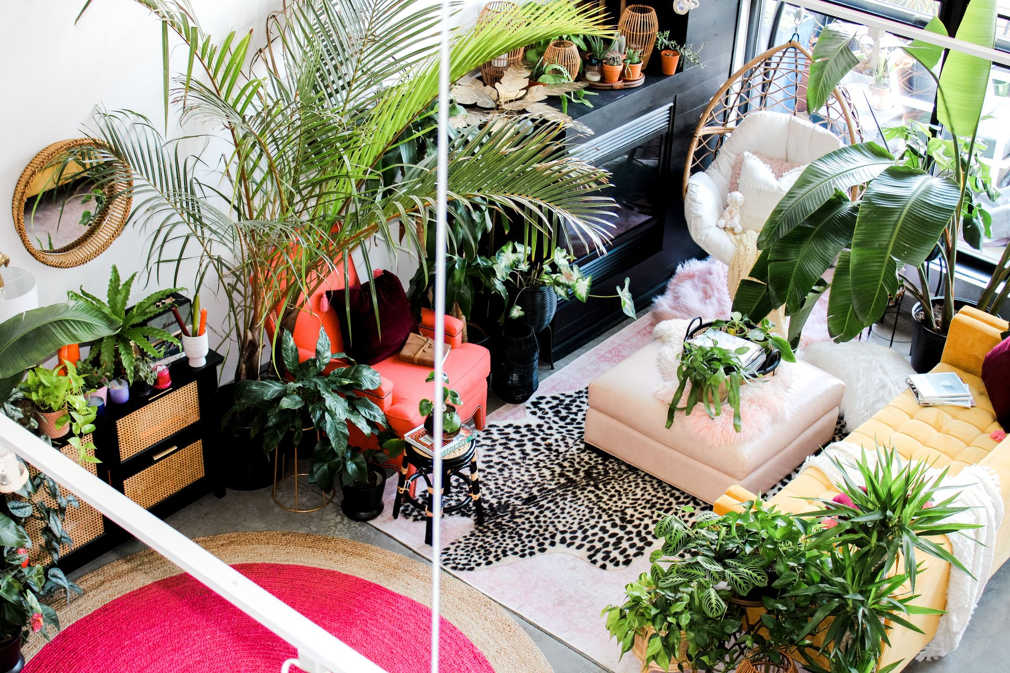 Shayla Owogunni's plant-filled home in northeast Minneapolis.