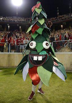 0ee381d6e452c6f45d475b24de163925--tree-costume-best-colleges.0.jpg