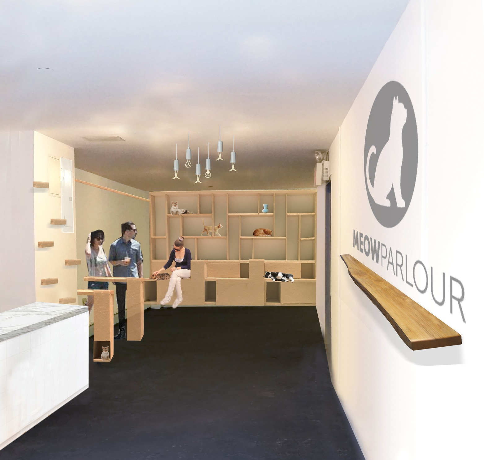 Everything You Need To Know About Meow Parlour New York Citys