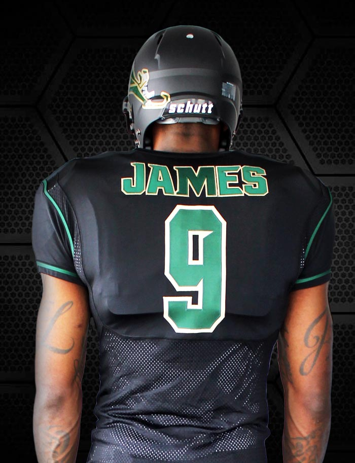 official photos f4ac5 41d73 lebron james football jersey