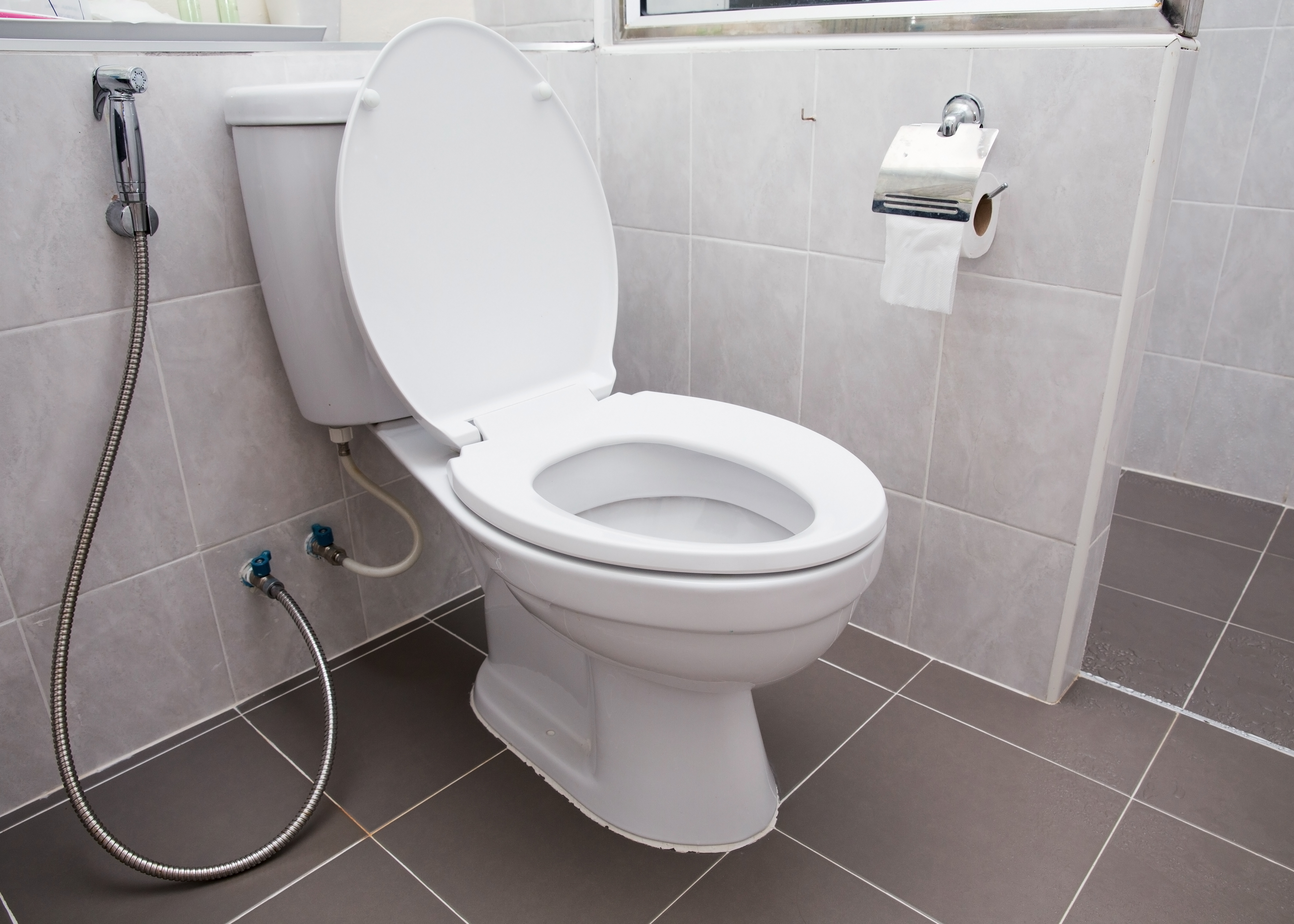 toilet seat. toilet The case against always leaving the seat down  Vox