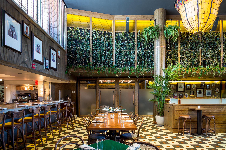 The Fern Nyc Restaurant