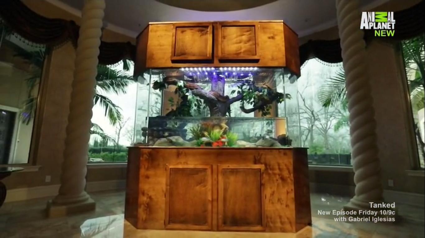 A Spectacular Headboard Aquarium Acrylic Tank Manufacturers