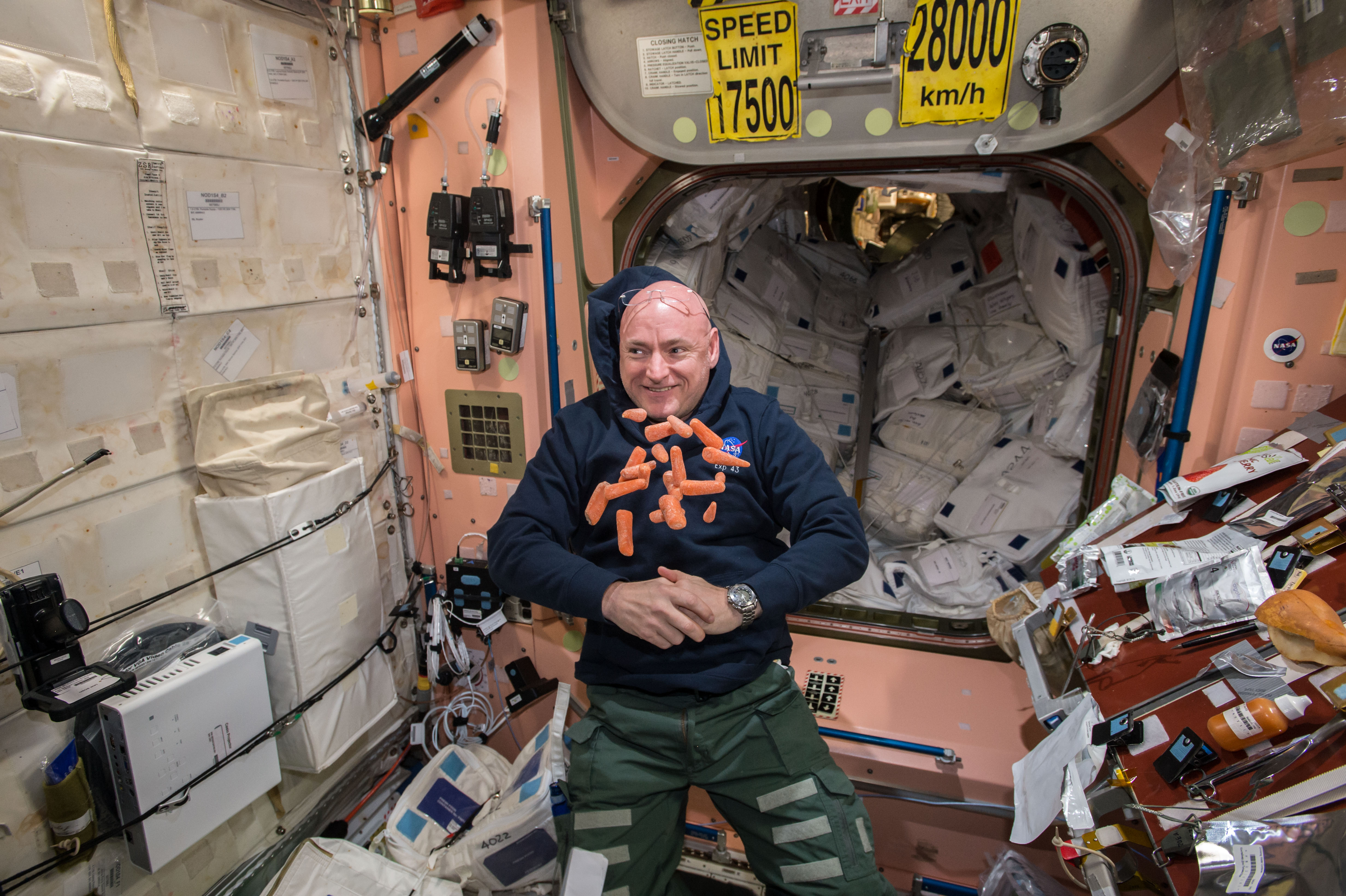 how scott kelly u0027s year in space may have changed his body the verge