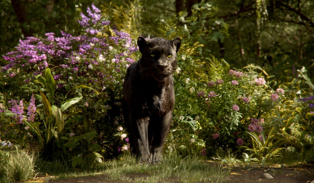 the jungle book review all of the talking animals ranked vox