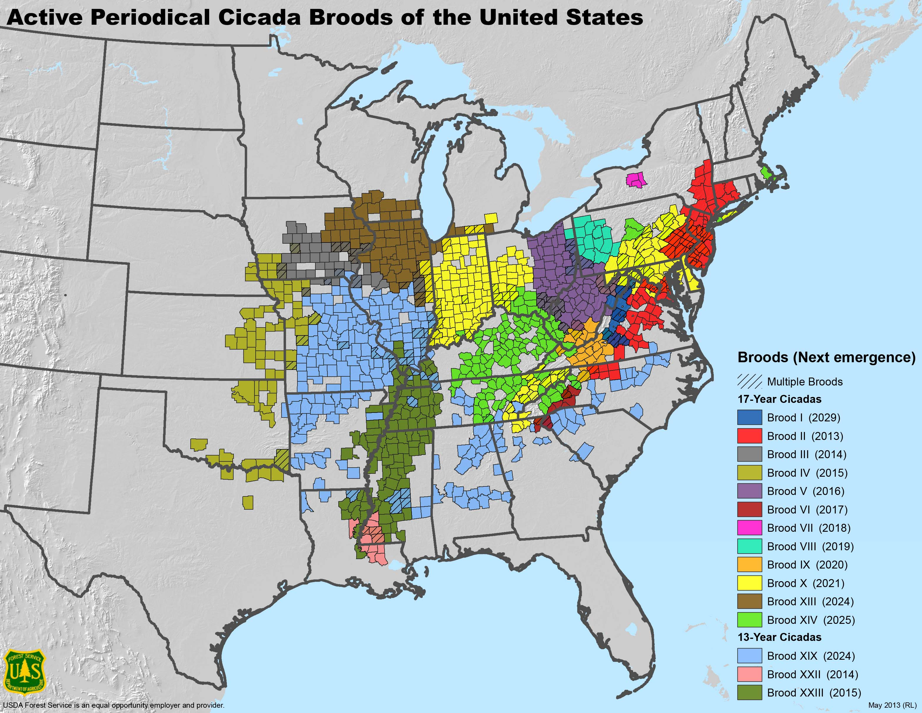 Where billions of cicadas will emerge this spring and the next