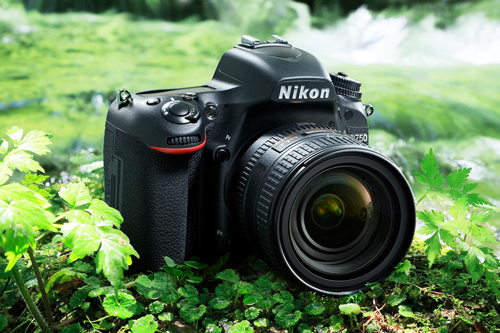 Nikon's D750 is a pro-level DSLR with a practical side - The Verge