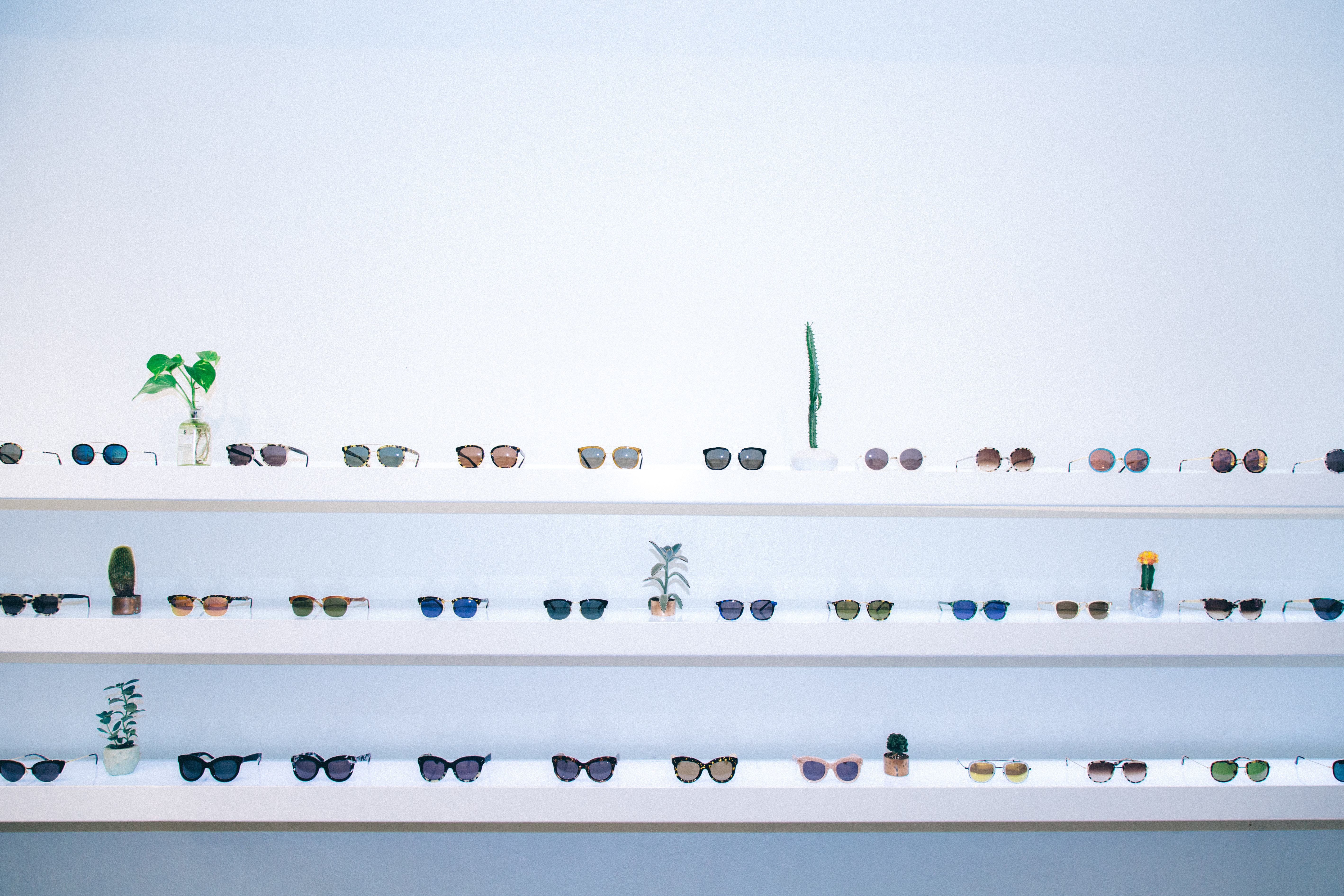 Just frames for glasses - A Wall Displaying Krewe Du Optic Sunglasses