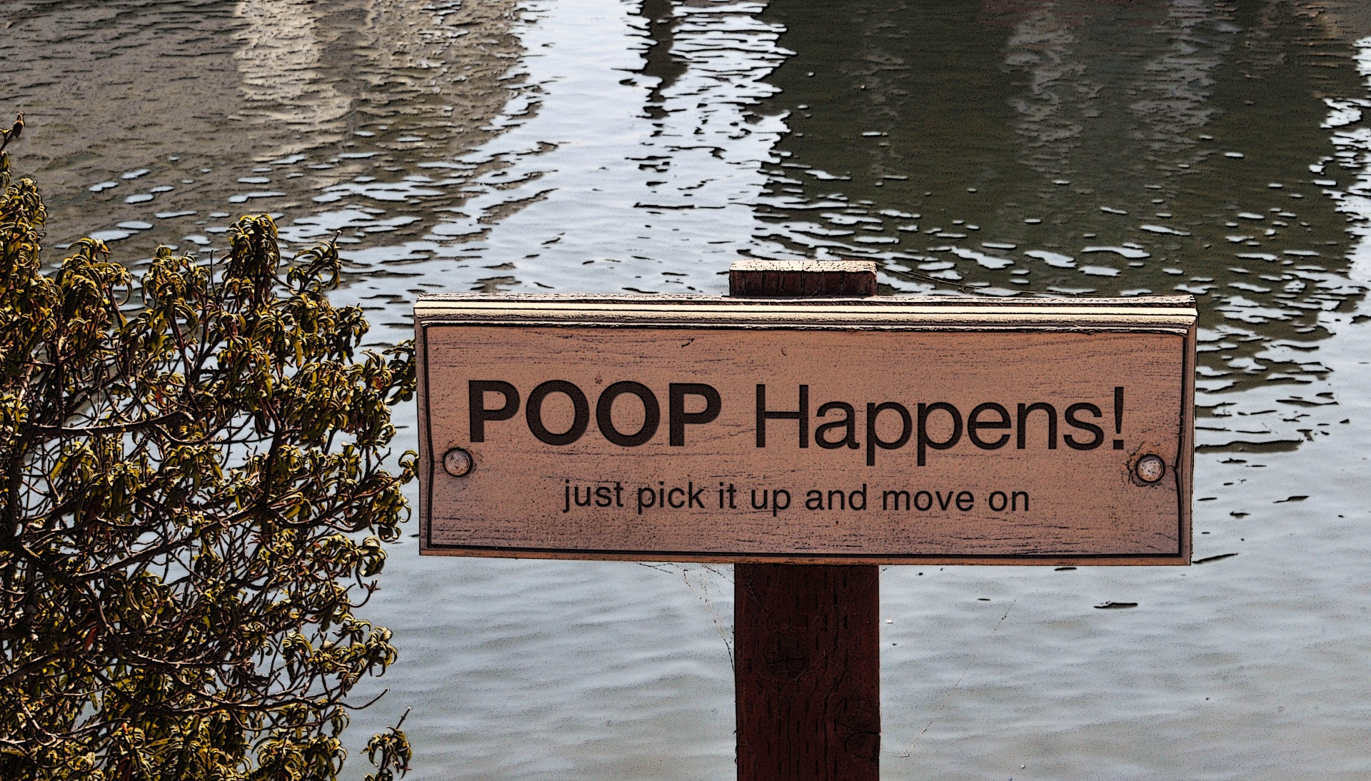 Bathroom Signs No Pooping poop 101: a beginner's guide to reading your own poop - the verge