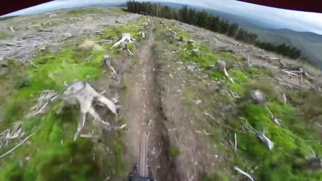Mountain biker zips through harrowing forest track and somehow doesn't die