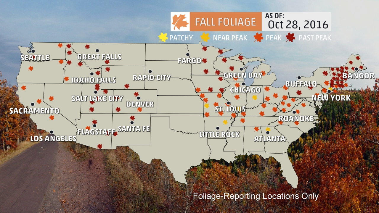 Theres Still Time To See Fall Foliage Vox - Us fall color map