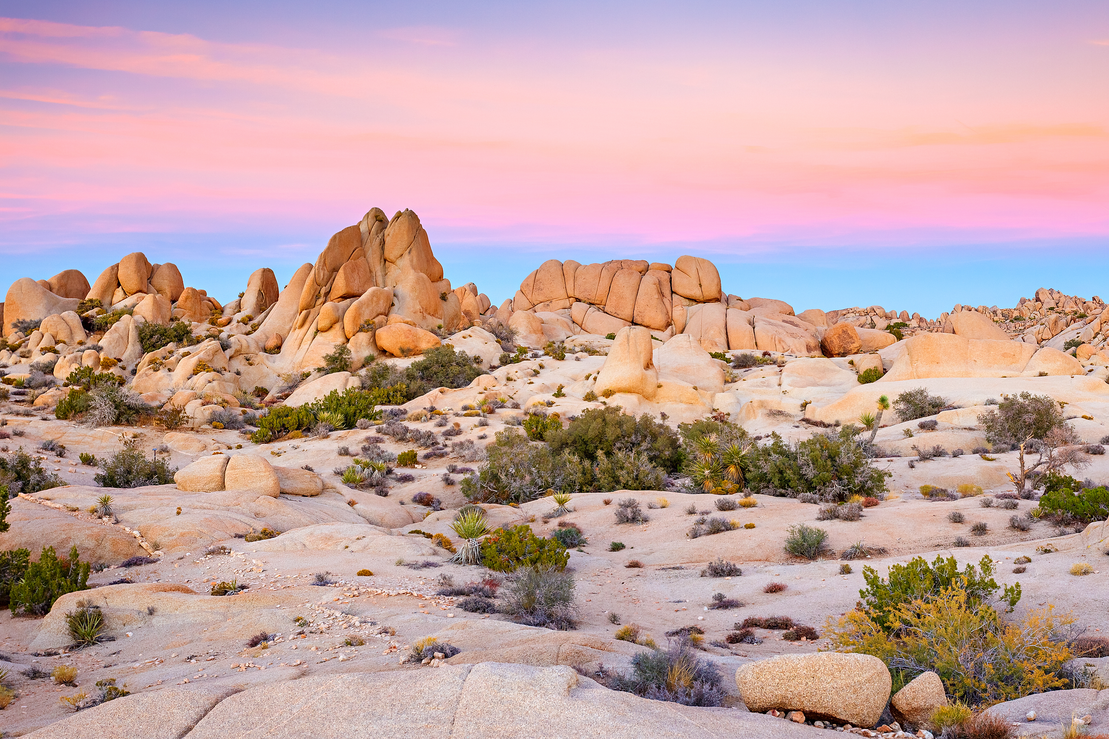 The 10 best National Parks to visit this winter - Curbed