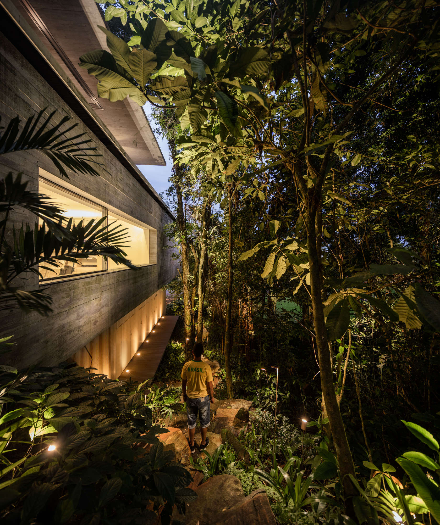 Stunning modern house in brazils rain forest has cozy sunken living room green roof