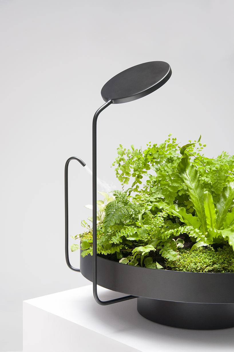 These light fixtures double as high-tech planters
