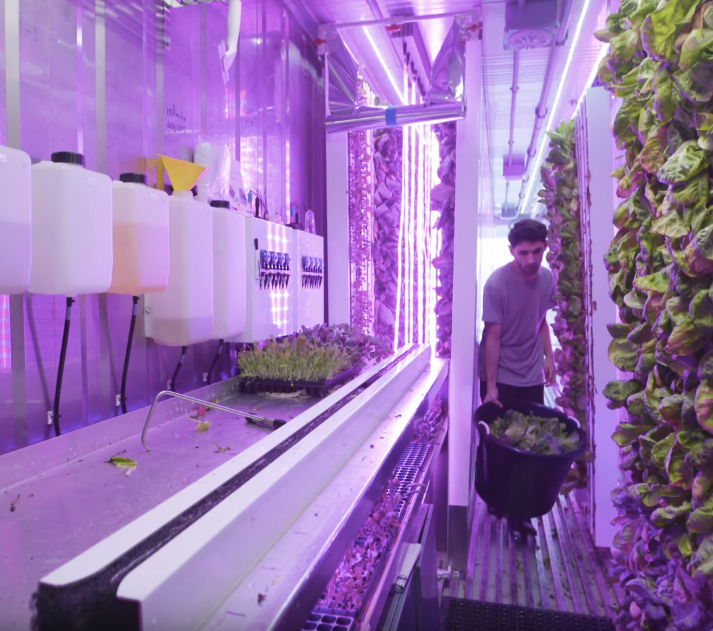 Shipping containers become urban farms with startup Square Roots