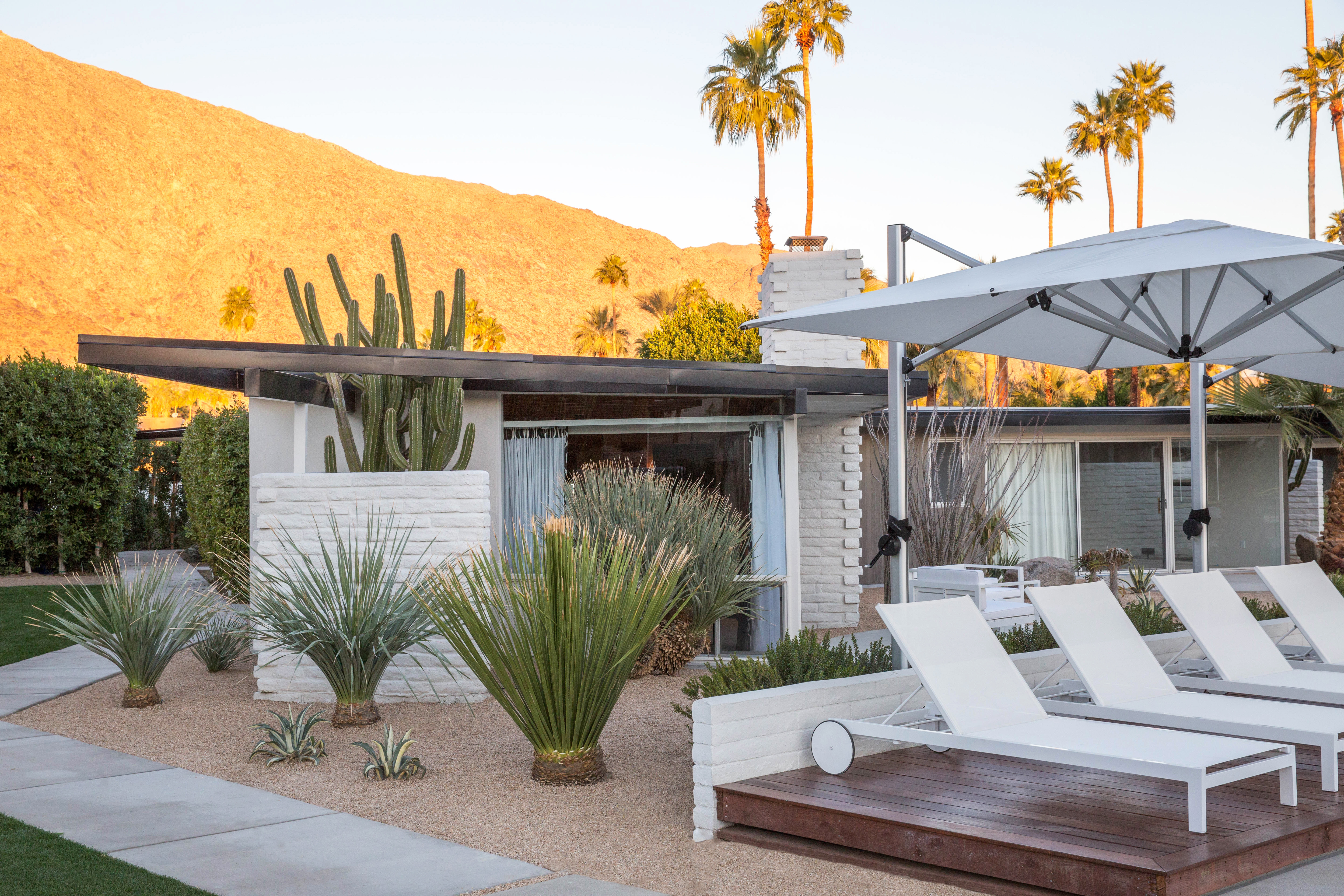 The Desert Collective's Jaime Kowal's guide to Palm Springs