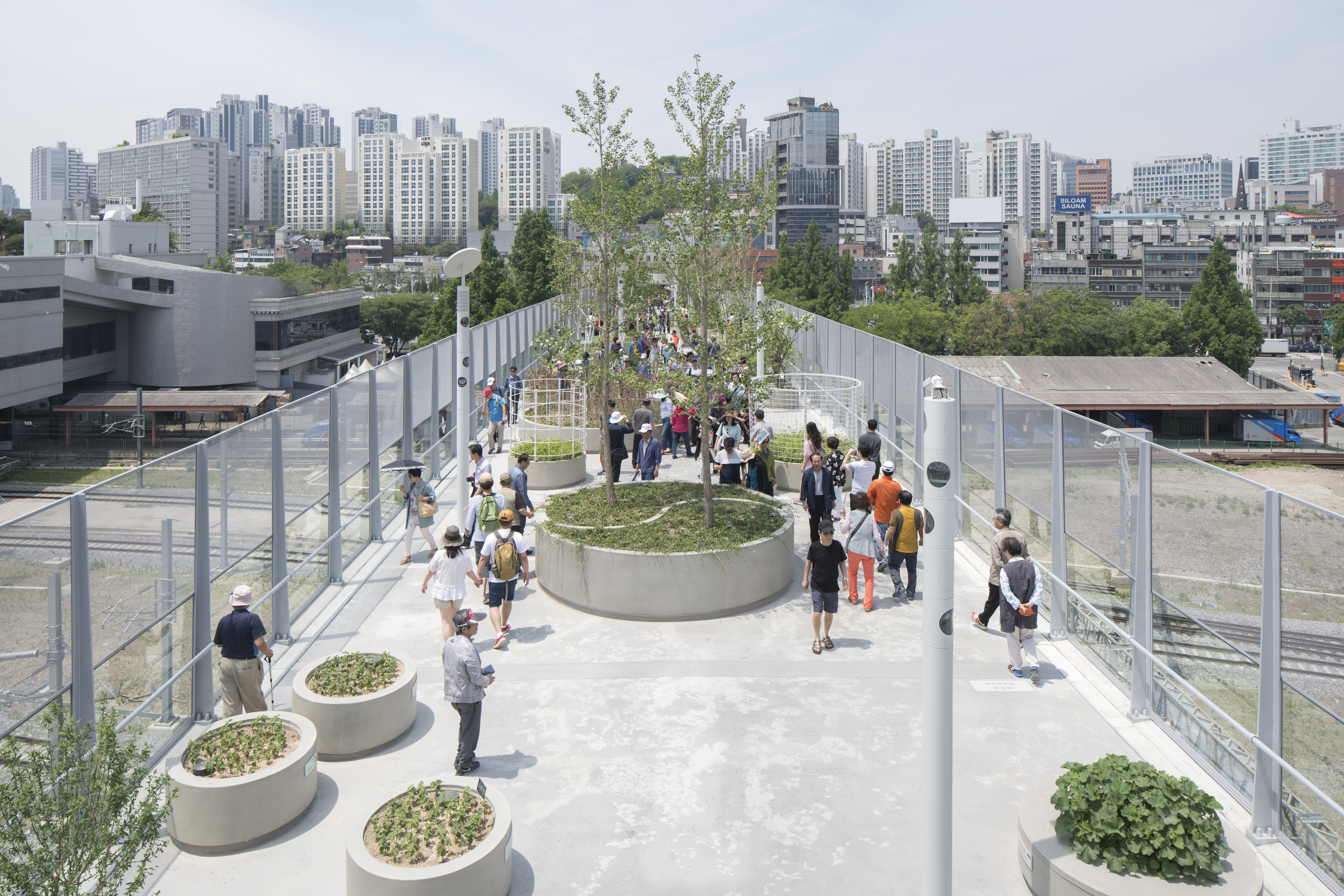 Old Highway Becomes Public Park With 24 000 Plants In