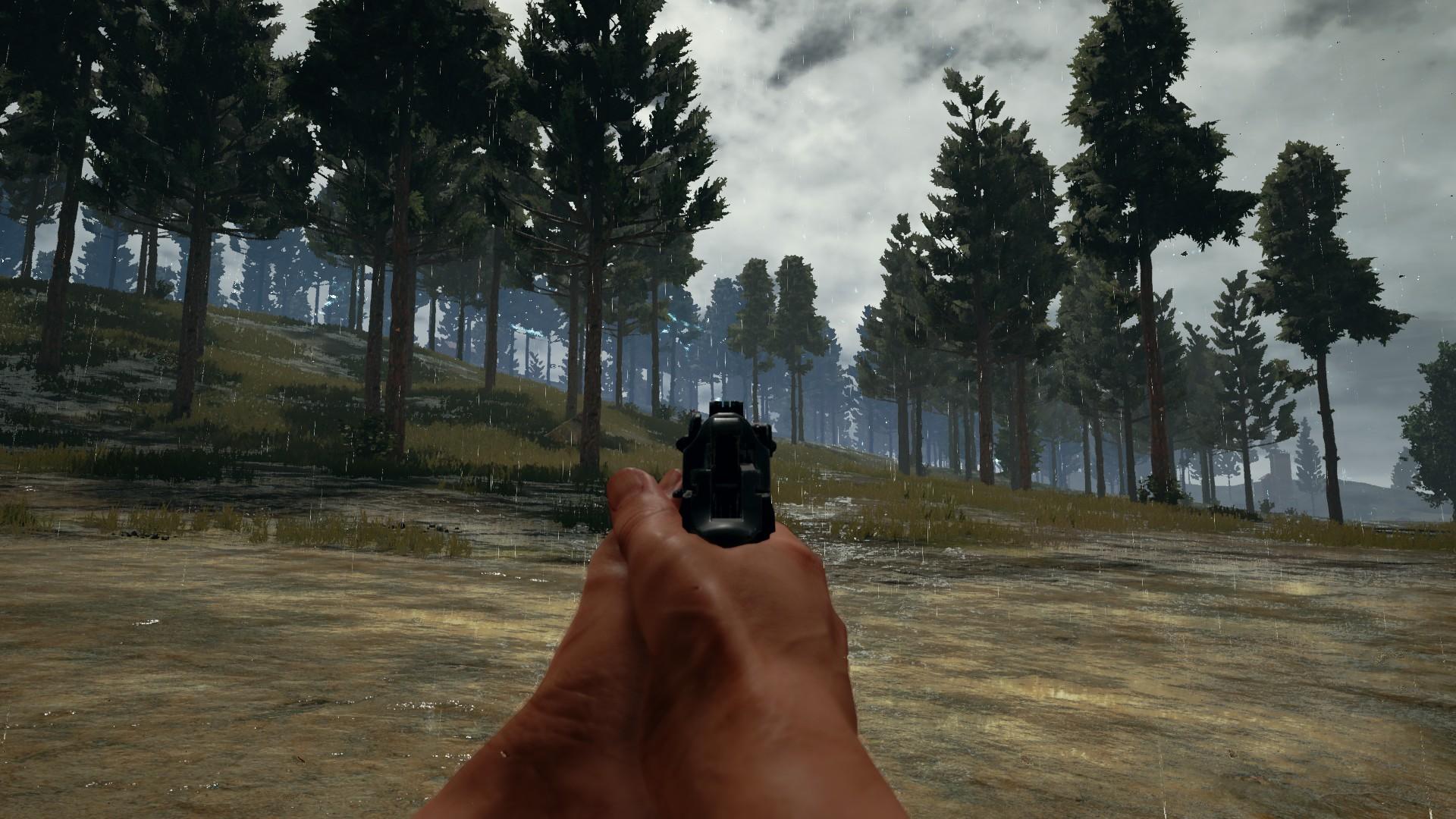 Resultado de imagen de snapshot playerunknown's battlegrounds