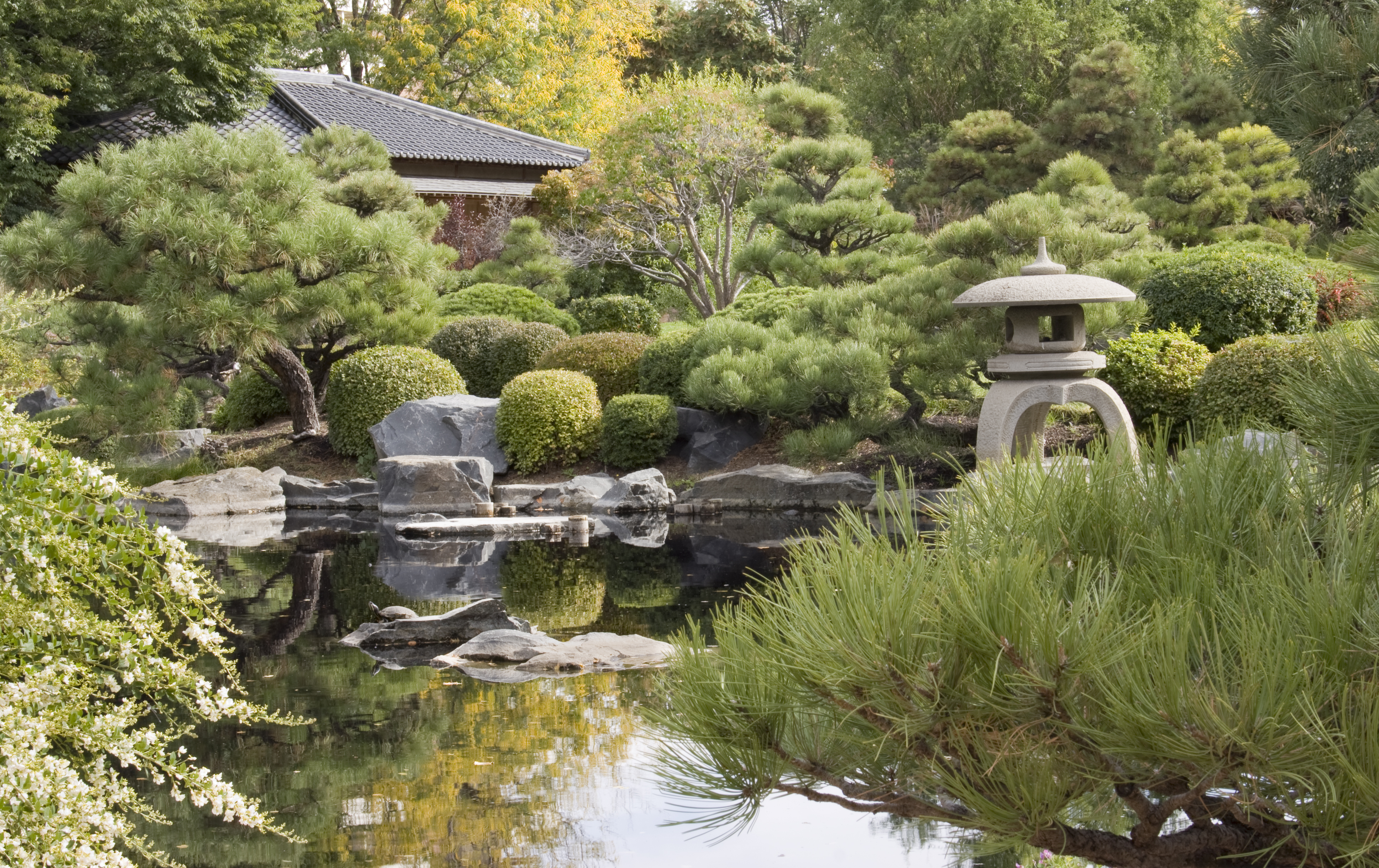 The Japanese Garden At The Denver Botanic Gardens. Shutterstock