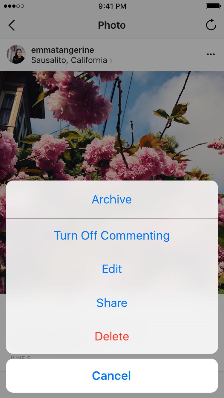 Instagram archive option