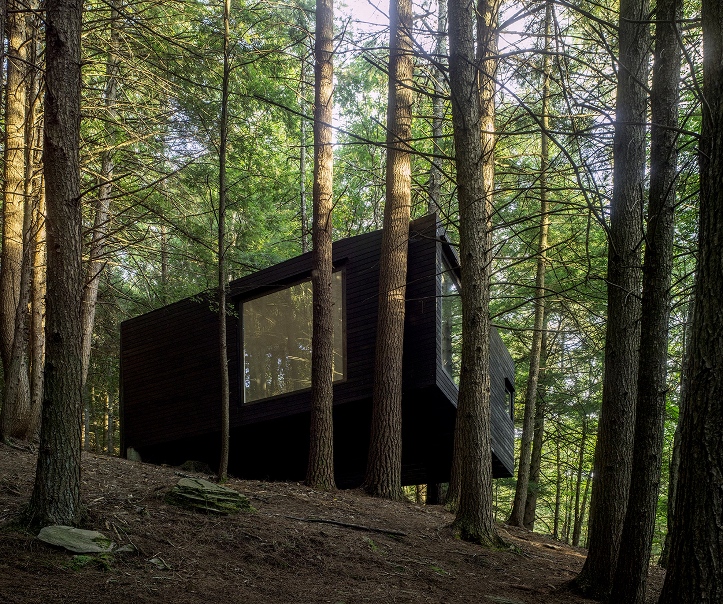 This tiny cabin is like a horizontal treehouse