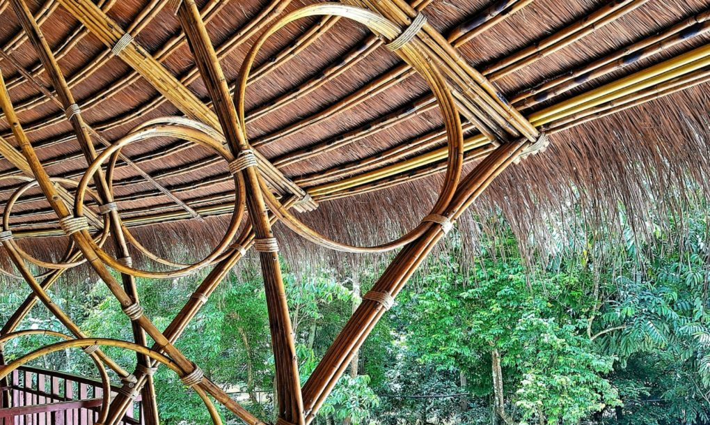This rainforest lounge s circular design helps it for Bamboo roofing materials